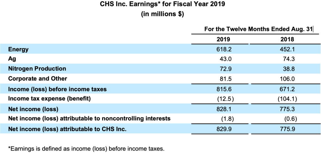 CHS income by segment chart